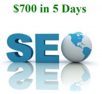 $700 In 5 Days SEO