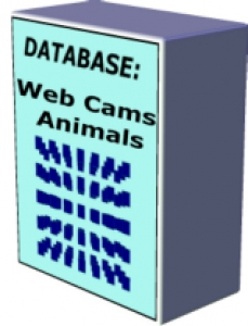 10 MySQL Database Pack