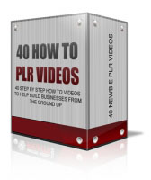 40 How To PLR Videos