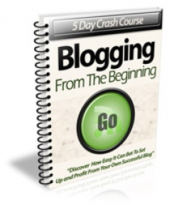 5 Day Crash Course Blogging From The Beginning