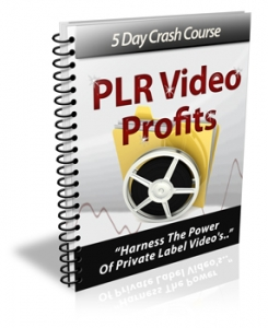 5 Day Crash Course PLR Video Profits