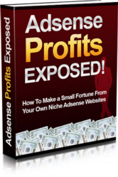 Adsense Profits Exposed