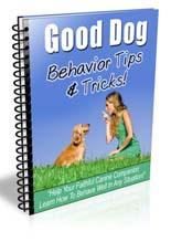 Good Dog Behavior Tips & Tricks