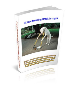 Housebreaking Breakthroughs (3 PDF DOG Training Ideas)