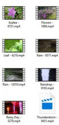 Rain 4K UHD Stock Video Footage
