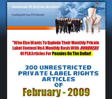200 Unrestricted PLR Articles - FEB 2009