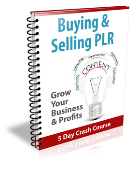 Buying and Selling PLR ( Newsletter )