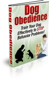 Dog Obedience