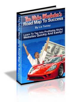 The Niche Marketer's Road Map To Success
