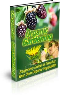 Organic Vegetable Gardening - PLR
