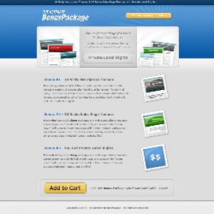10 PLR Theme Package