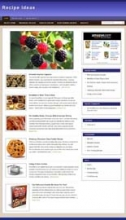 Recipe Niche Blog (Wordpress Theme)