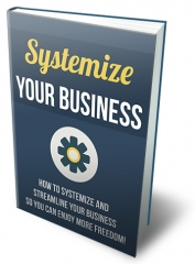 Systemize Your Business